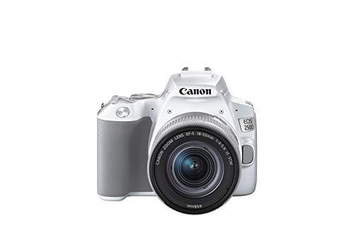 Canon EOS 250D - Cámara digital (24,1 MP, 6000 x 4000 Pixeles, CMOS, 4K Ultra HD, pantalla táctil)...