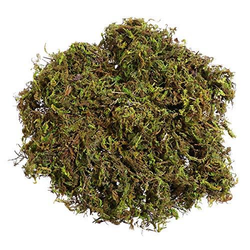 Winomo - 3 paquetes de musgo artificial, plantas de liquen verde falso para decoración del hogar,...